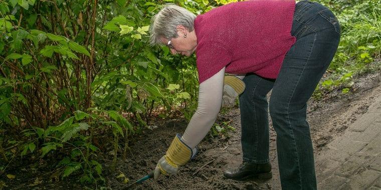 tuinieren-zonder-rugklachten